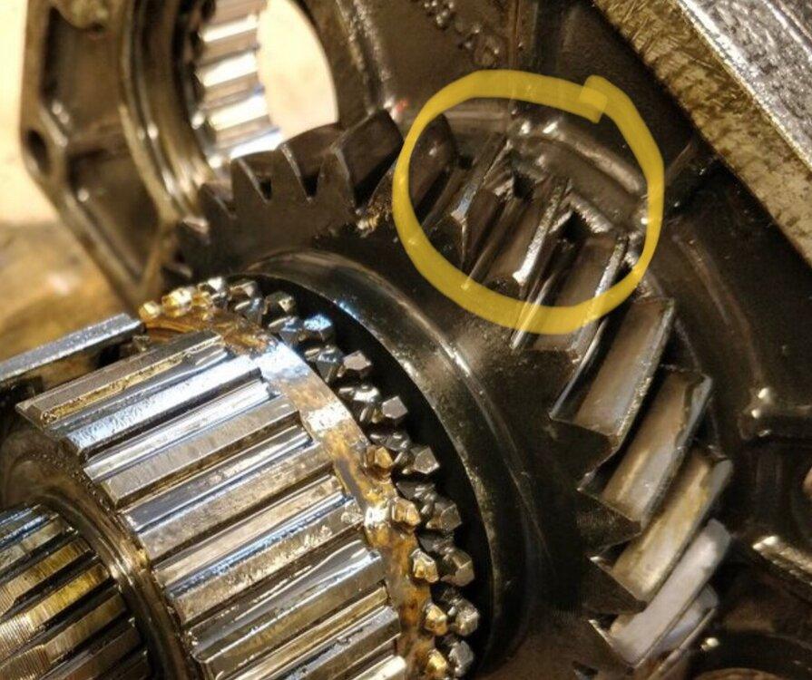 83D2AADC-3EDE-4BCB-B118-AEDFA272FAC7.thumb.jpeg.7292dfeccd8c6db9e1aa64256c5047c0.jpeg